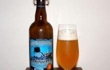 Ouessane, bière aux algues - Brasserie des Abers