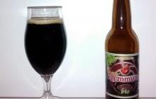 Biere Dremmwel Stout Bio