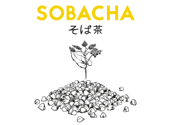 Illustration bière Sobacha