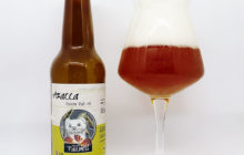 Azacca Session Pale Ale - A bottle and a Craft beer Ale