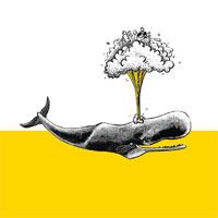 Logo Brasserie Artisanale de Paimpol