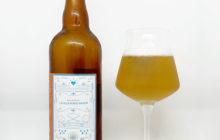 Les Fous Du Labo 1 Cream Ale - Brasserie La Ville Porte Amour